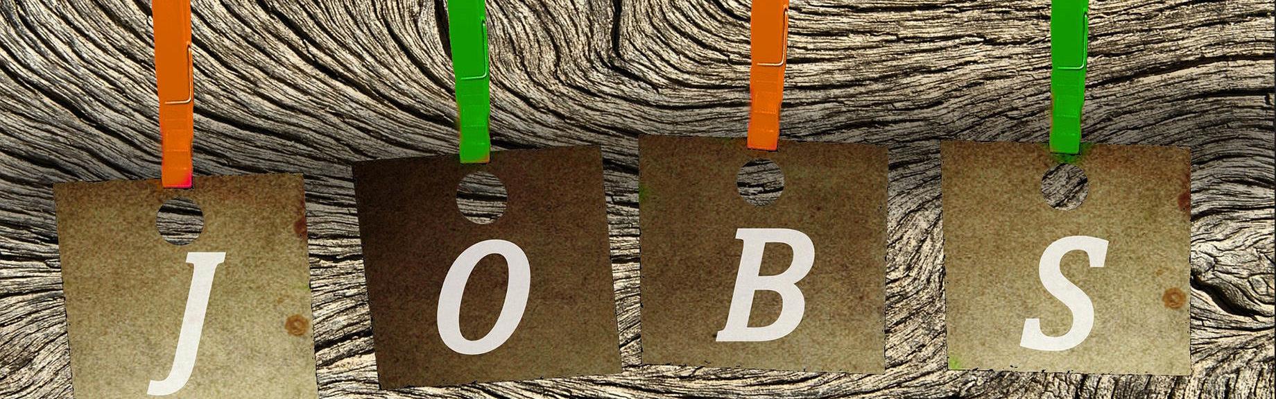 Jobs und Stellenanzeigen